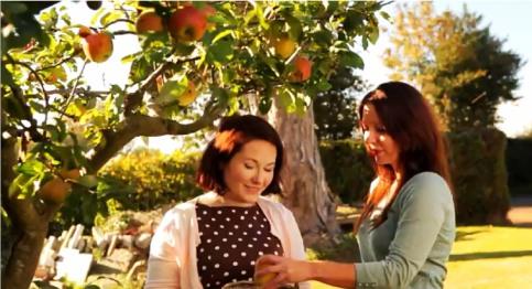 apple-picking2