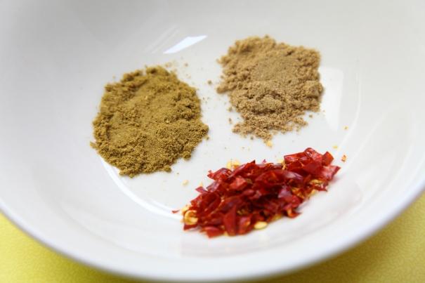ravioli recipe (3)